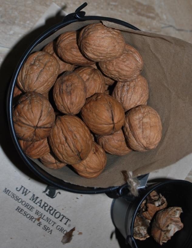 Walnuts and JW Marrriot