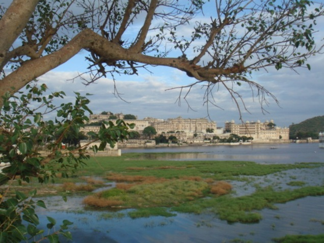 the view off the city palace at udaipur