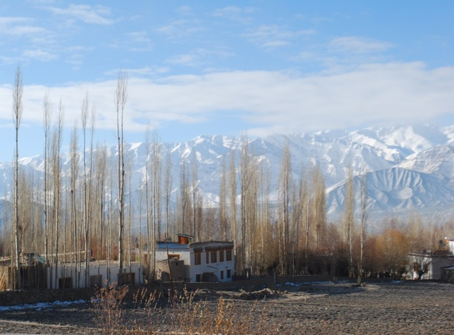 fields cottage and Himalayas