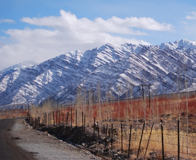 gold and himalayas