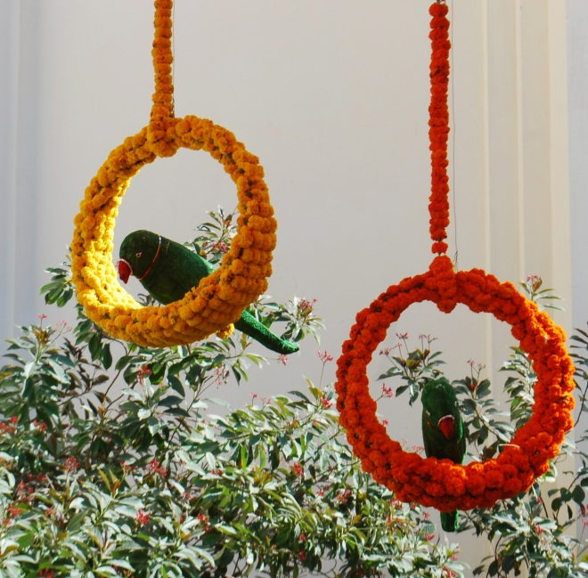 perches of flowers