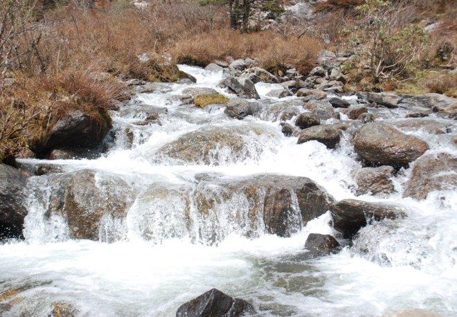 himalyan spring