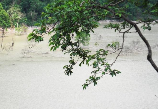 teesta floods