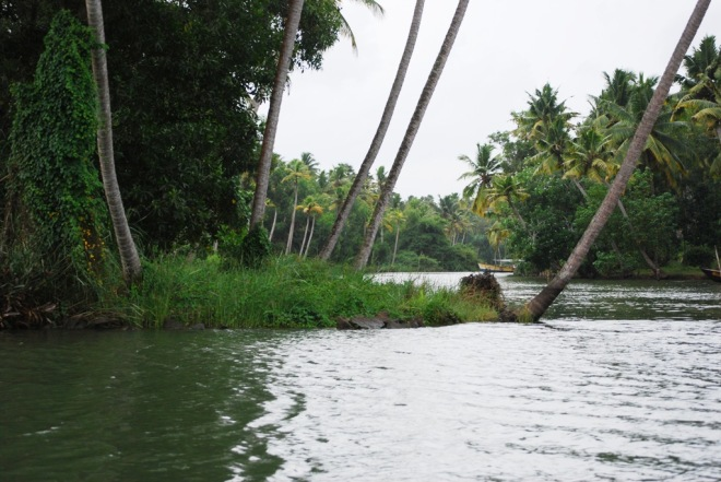 the river at poovar