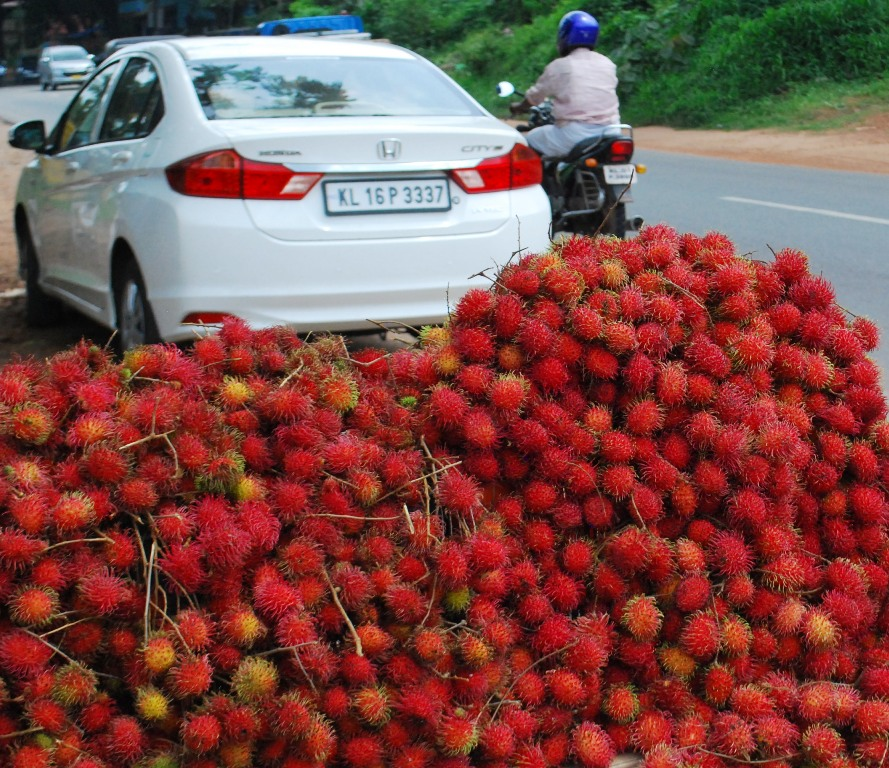 fruit on the highway
