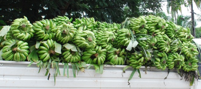 truck of bananas
