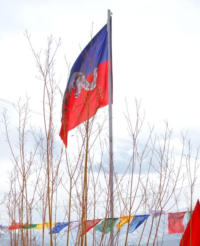 dragon-flag